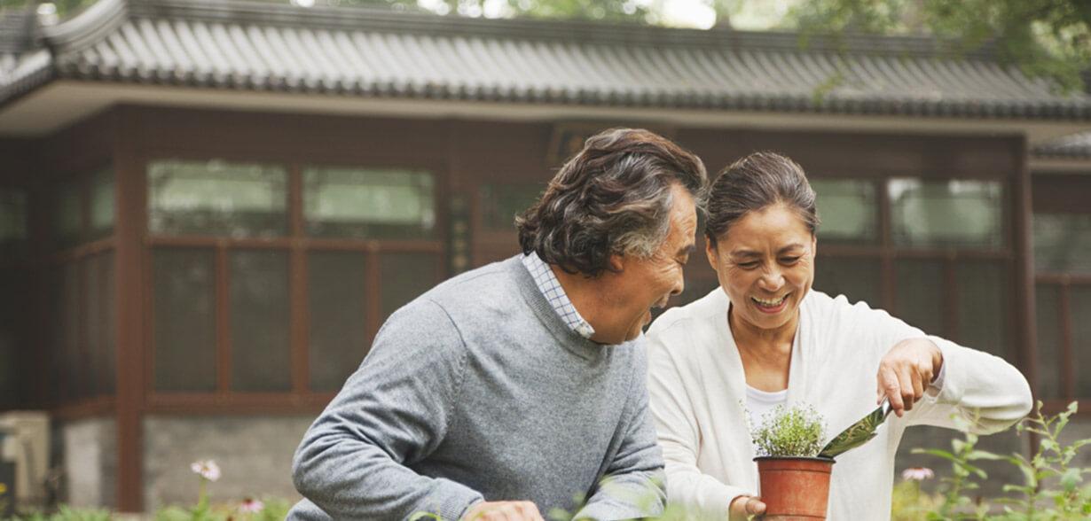Un couple qui jardine